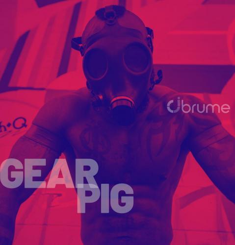Gear-Pig-med